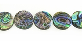 Paua Coin Shell Beads 16mm