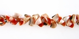 Botswana Shell Beads 8-9mm