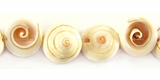 Lisway Swirl Head Shell Beads 12mmx8mm