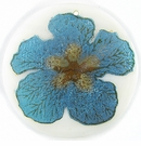 "Metallic Blue ""Gumamela""  Flower Design Round Makabibi"