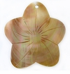 Brownlip Flower Shell Pendants 50mm