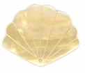 Mother Of Pearl Fan Shell Pendants 30x40mm