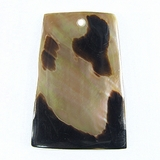 Brownlip Spotted Flare Shell Pendants 25x36mm