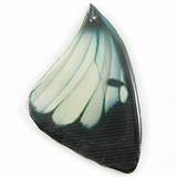 Black-white Butterfly Wing Paper Print Wrapped Wood Pendant