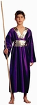 Child's Purple Wise Man Costume
