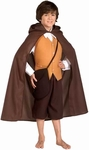 Child's Hobbit Costume