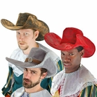 Musketeer Hats