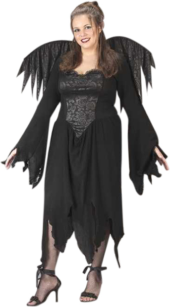 Plus Size Black Rose Fairy Costume