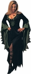 Adult Enchantra Spider Witch Costume