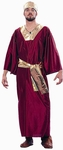 Adult Wine Wise Man Costume