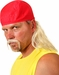 Hulk Hogan Costume Wig and Mustache