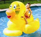 Pool Ride-On Toys for Kids