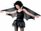 Adult Expandable Bat Costume Wings