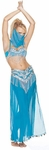 Authentic Style Belly Dancer Costume