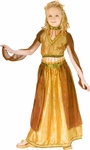 Child's Belly Dancer Costume