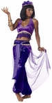 Purple Belly Dancer Costume