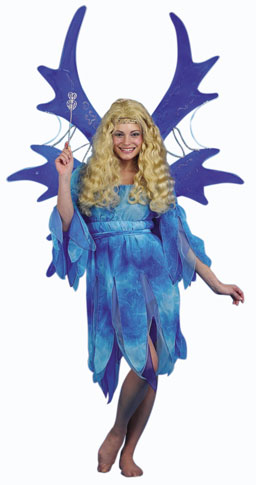 Adult Blue Fairy Costume