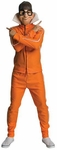Adult Despicable Me Vector Costume