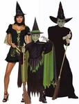 Wicked Witch of the West Costumes