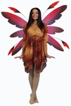 Adult Brown Fairy Costume
