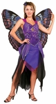 Adult Purple Butterfly Costume