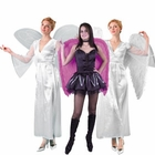 Angel Costume Accessories
