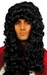 King Charles Costume Wig