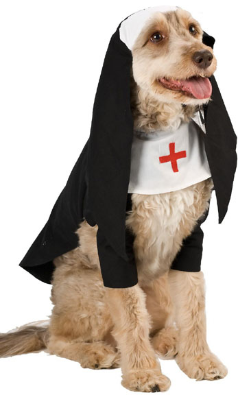 Nun Dog Costume Nun Costumes Brandsonsale Com