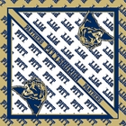 Pittsburgh Panthers Bandanas