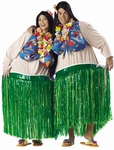 Adult Fat Hula Dancer Costume