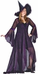 Plus Size Rose Shimmer Witch Costume