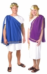 Men's Basic Toga Costume