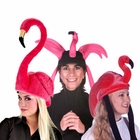 Flamingo Hats