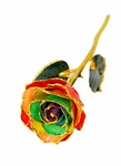 Gypsy Rainbow Gold Dipped Rose