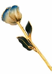White & Navy Blue Pearl Gold Dipped Rose