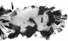 White/Black Feather Boa