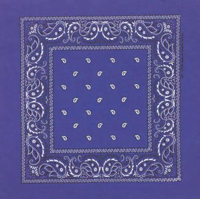Double Sided Royal Blue Paisley Bandanas