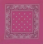 Double Sided Fushsia Paisley Bandanas