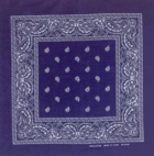 Double Sided Navy Paisley Bandanas