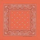 Double Sided Orange Paisley Bandanas