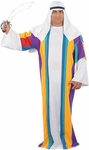 Plus Size Arabian Prince Costume