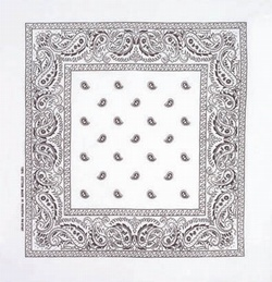 Double Sided White Paisley Bandanas
