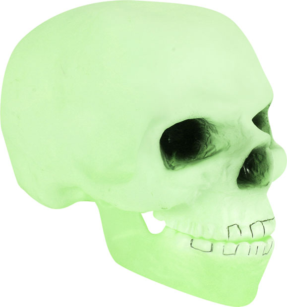 Glow-In-The-Dark Skull