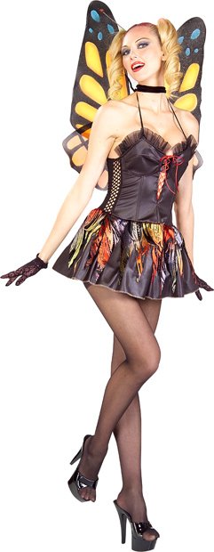 Adult Sexy Butterfly Costume