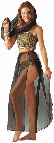 Adult Arab Princess Costume