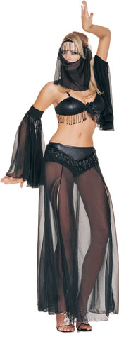 Beaded Belly Dancer Costume
