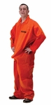 Department of Erections Prisoner Costume