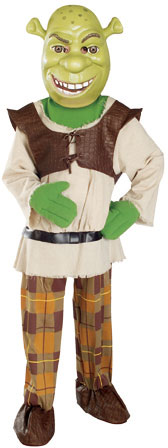Child's Shrek Costume
