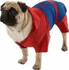 Spider-Man 3 Dog Costume