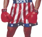 Adult Rocky Balboa Boxing Gloves